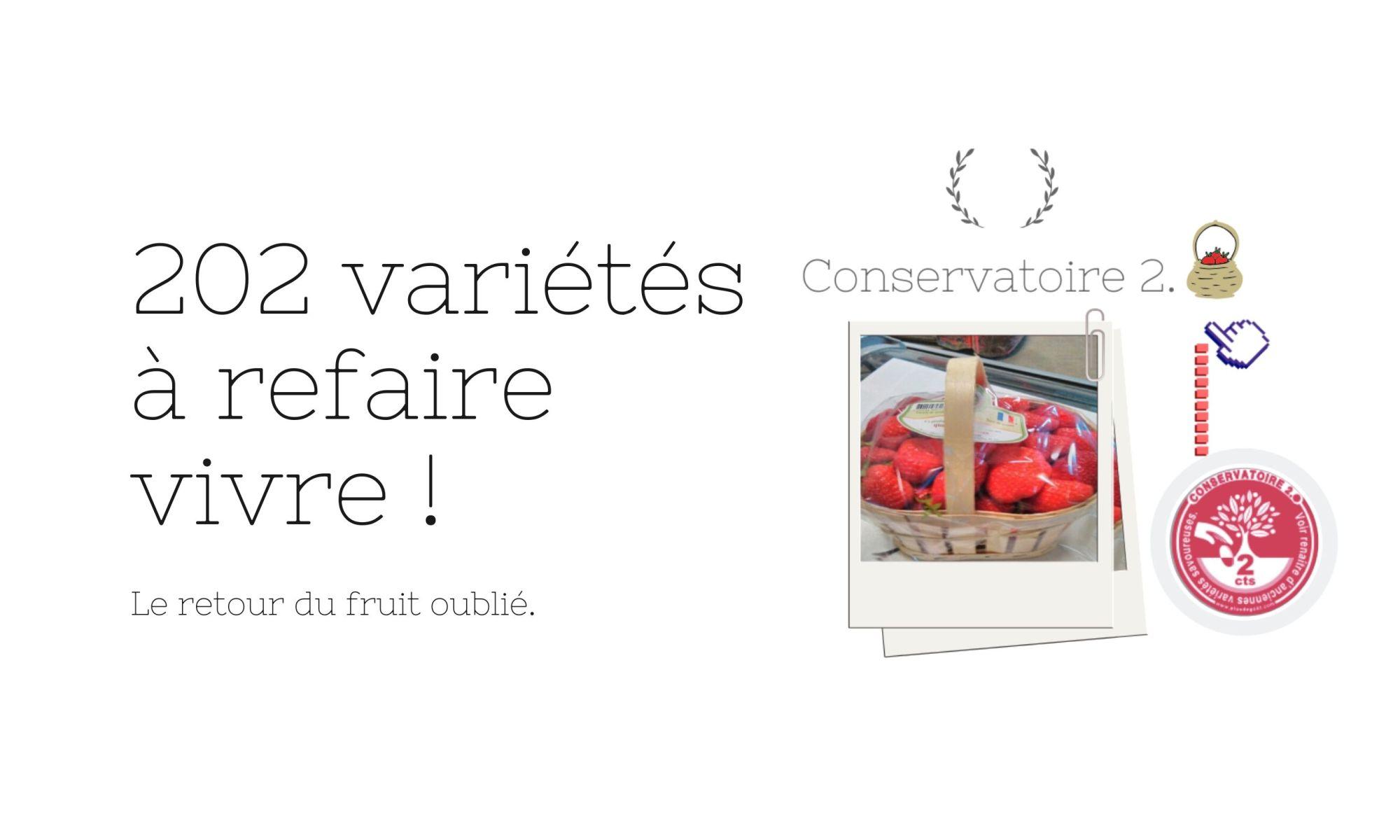 Conservatoire 2.0 : le retour du fruit oublié. 202 variétés à faire revivre.