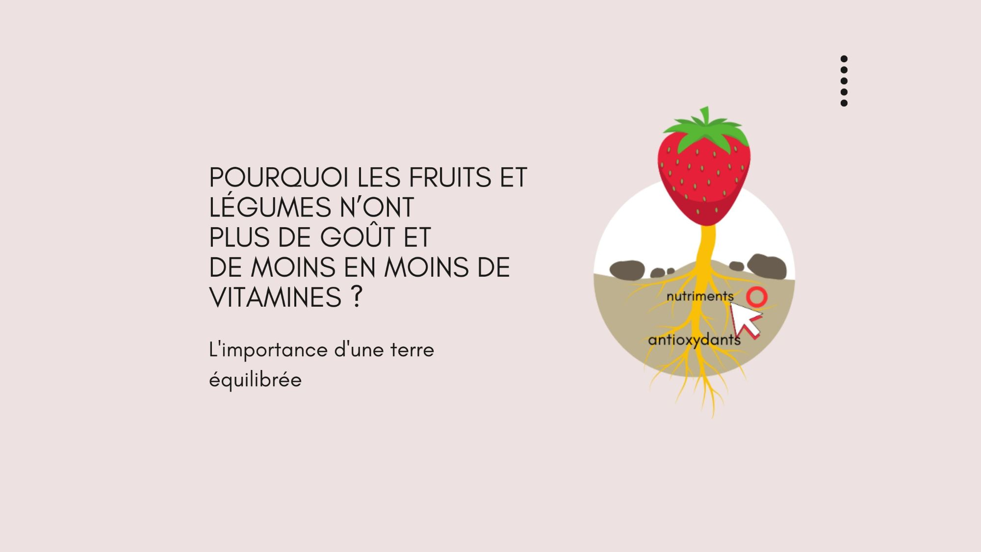 Pourquoi les fruits et légumes n'ont plus de goût et de moins en moins de vitamines ? L'importance d'une terre équilibrée.